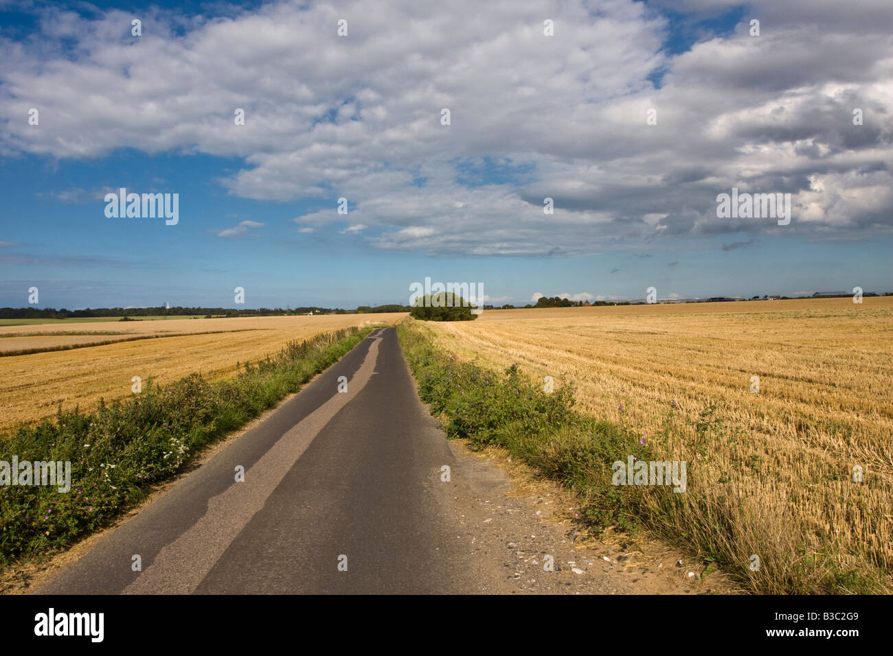 Country Lane in Kent between to fields of Wheat Stubble. - Stock Image