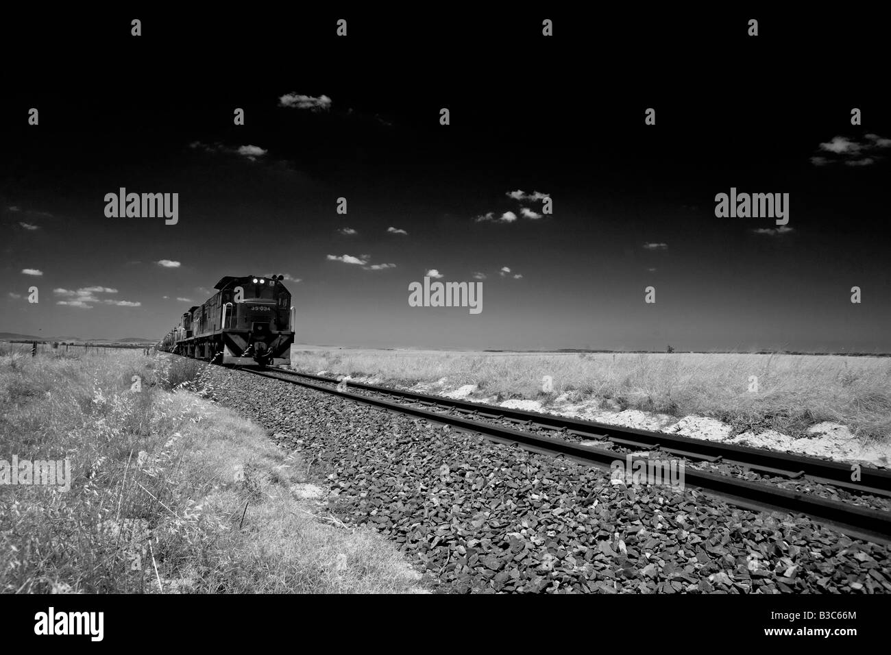 South Africa, Western Cape, cape Province. Darling. One of the longest ore train in the worlds crosses the open - Stock Image