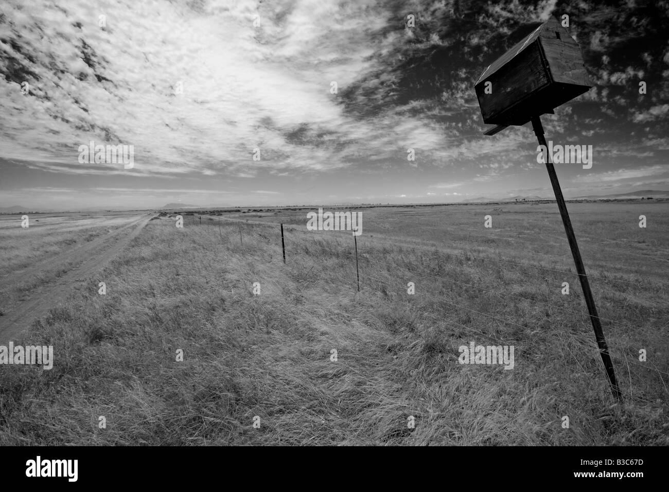 South Africa, Western Cape, Swartland, Darling. An abandoned bird box leaning lazily to one side on farmland near - Stock Image
