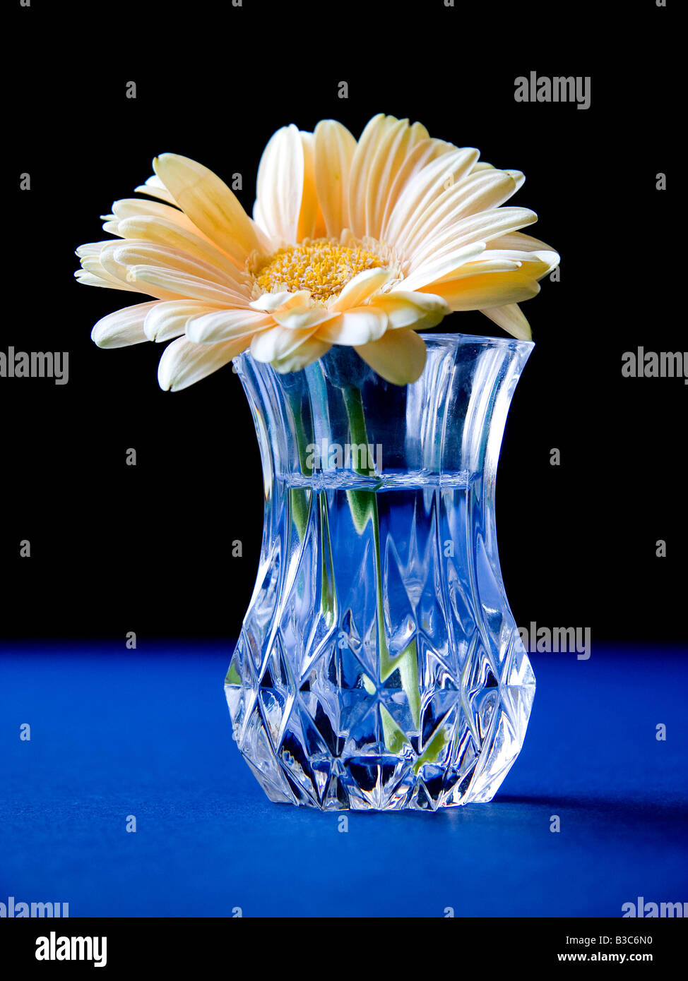 at buy cut cheap glass bulk sale for prices wholesale blue vase vases