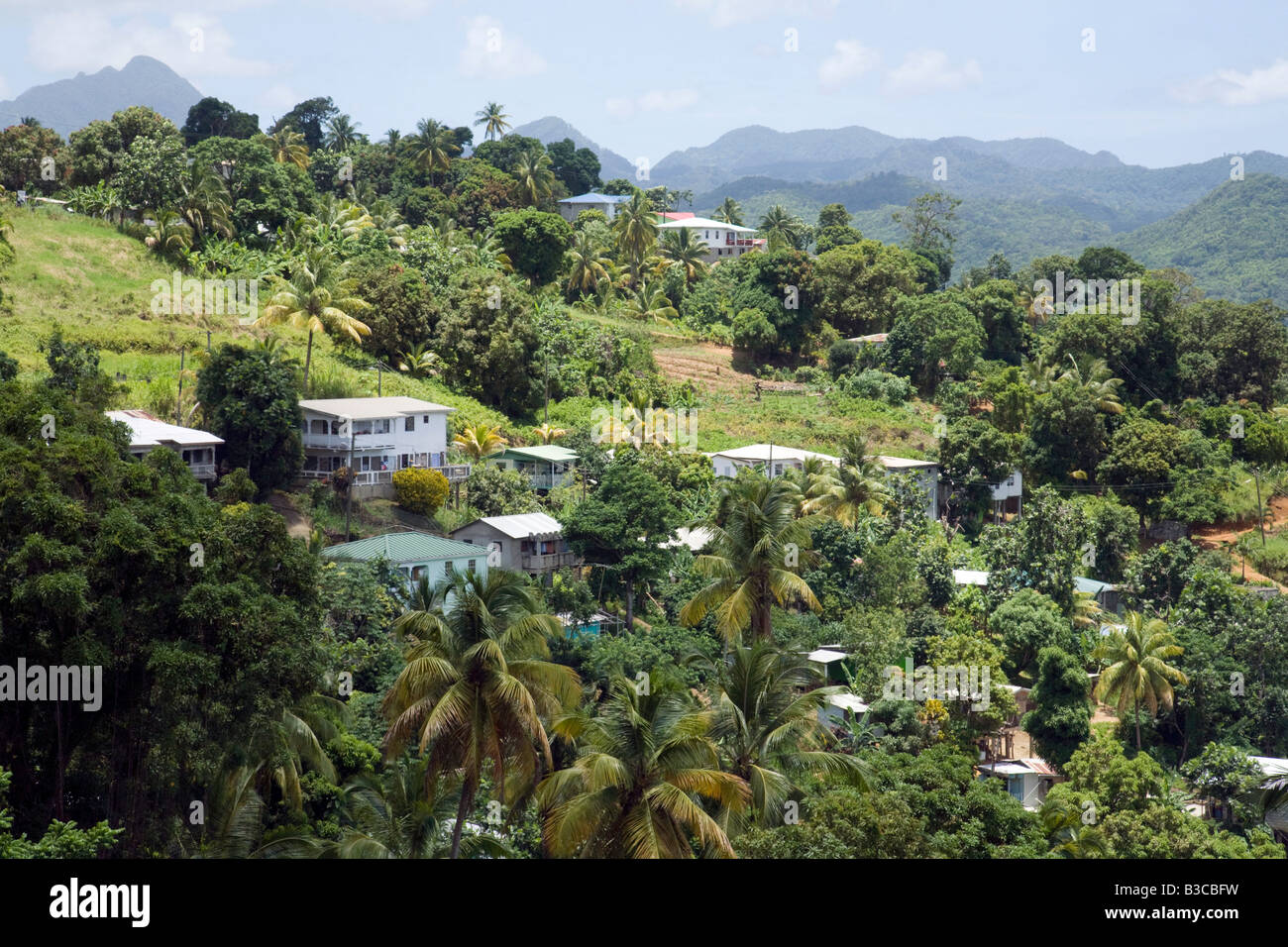 Housing on the edges of the rainforest, St Lucia, 'West Indies' - Stock Image