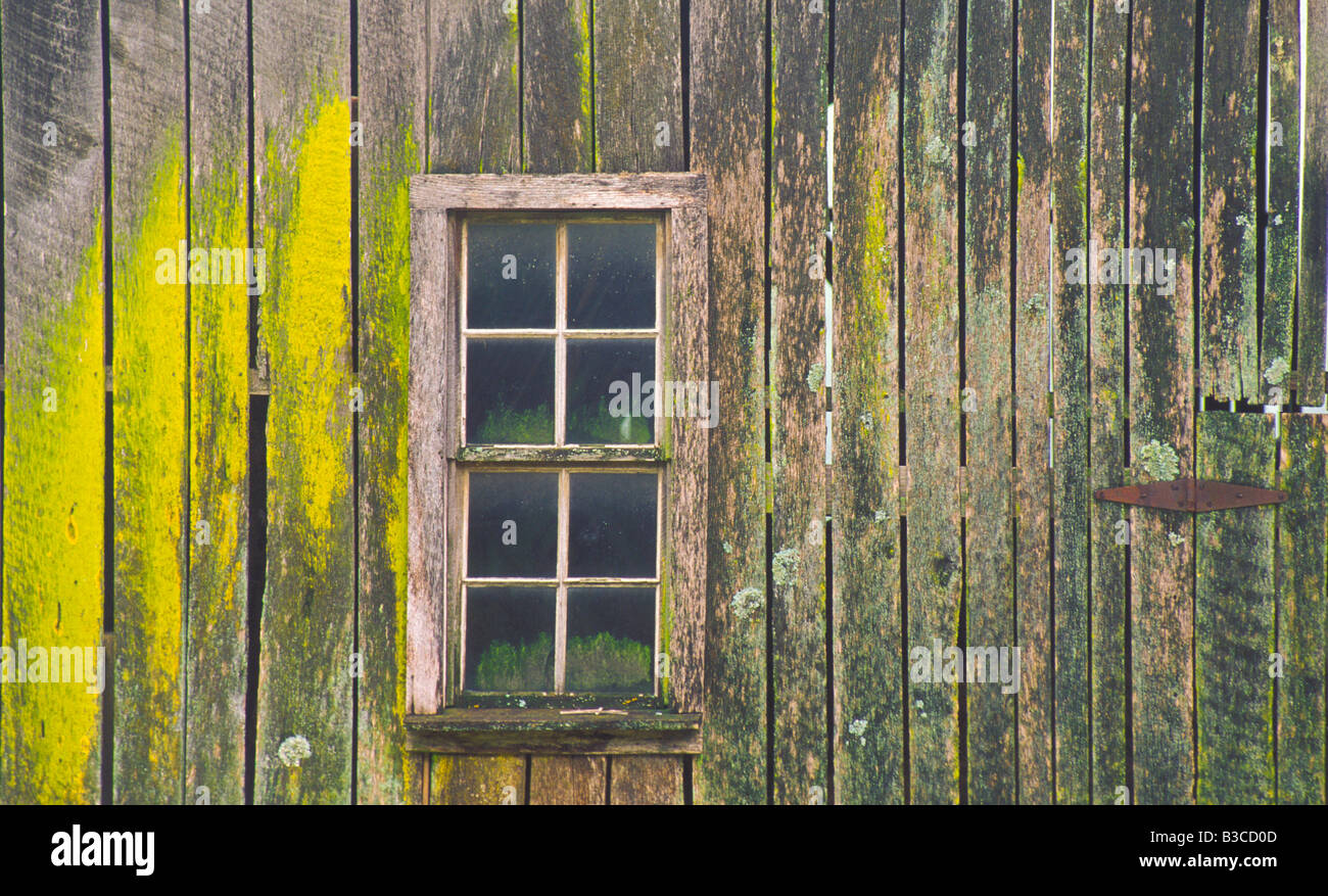 IDAHO Agriculture Palouse Region Textured old weathered barn and pane window on farm - Stock Image