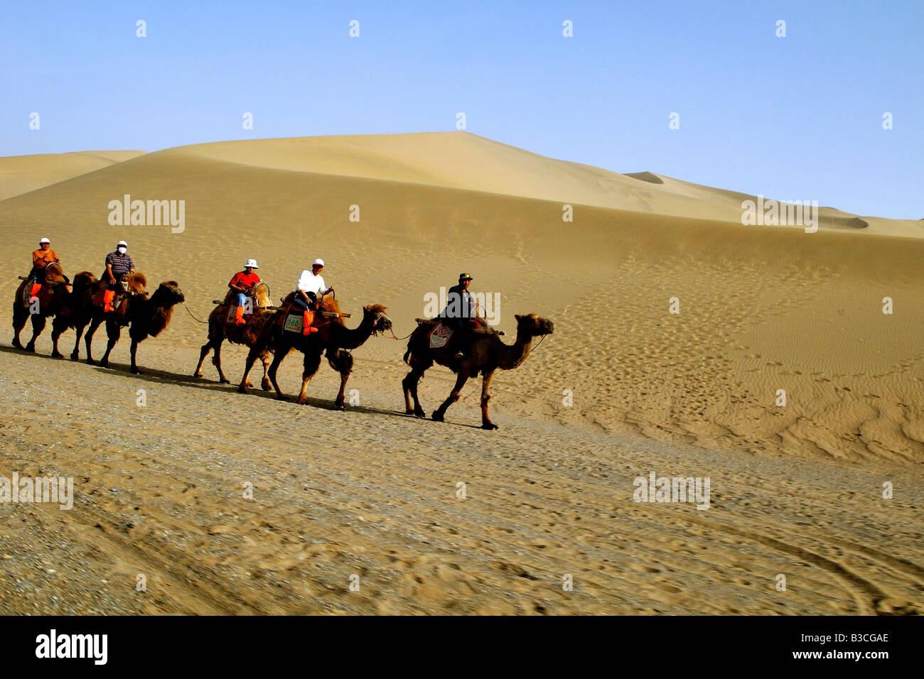 Camel Ride Travelers Ride Camels On Short Camel Journey In The Gobi Desert In Gansu China Alamy Travelers Ride Camels On Short Camel Journey In The Gobi Desert In