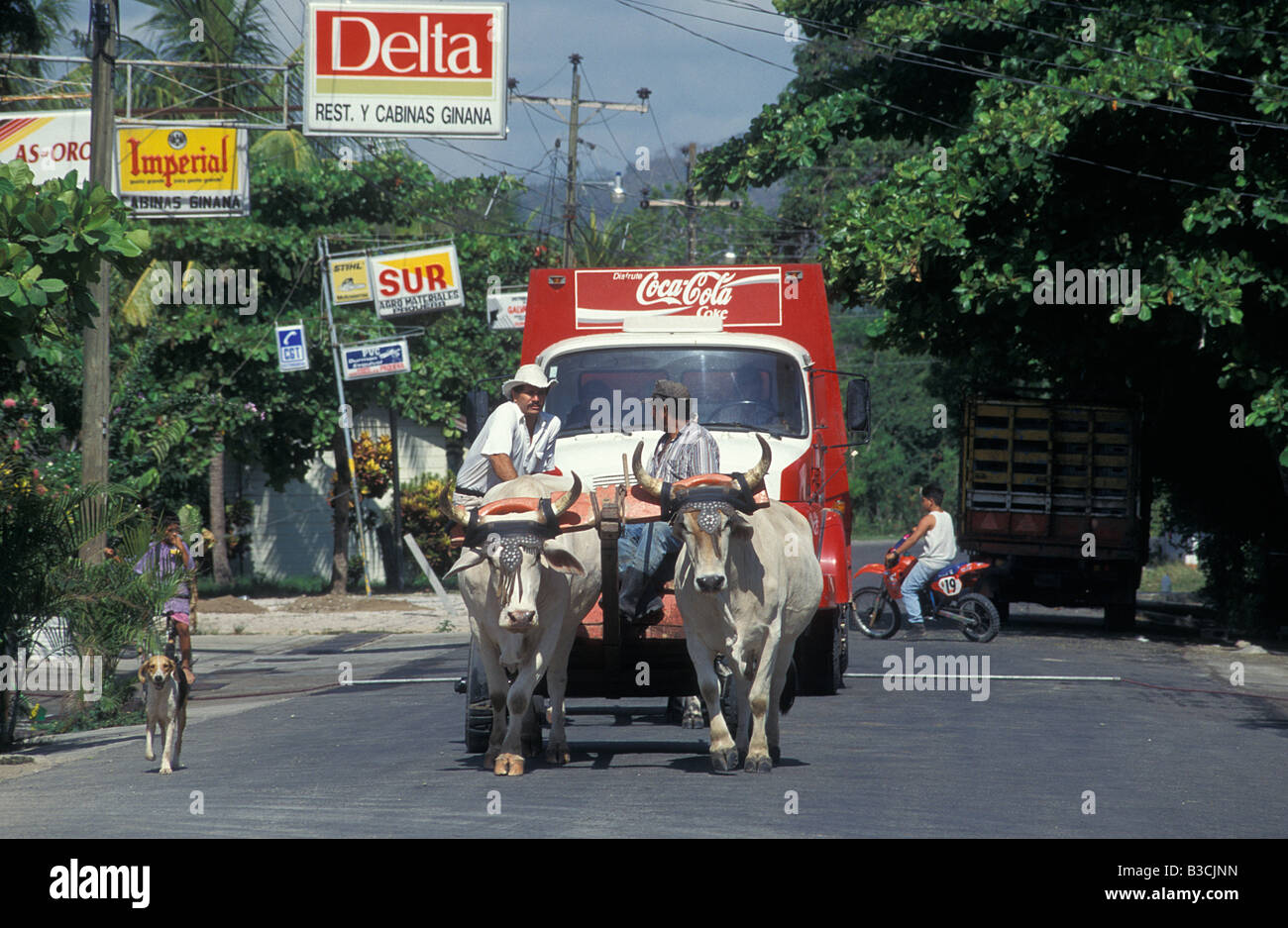 Local Men Steering an Ox Driven Cart in the main street in Paquera Guanacasto Costa Rica Central America - Stock Image