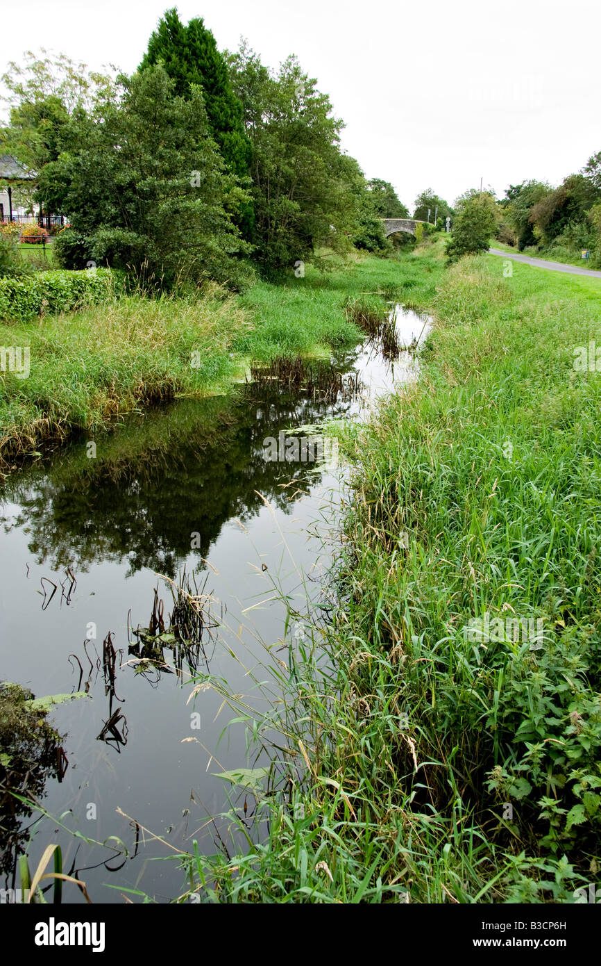 The Newry to Portadown canal overgrown with weeds and vegetation - Stock Image