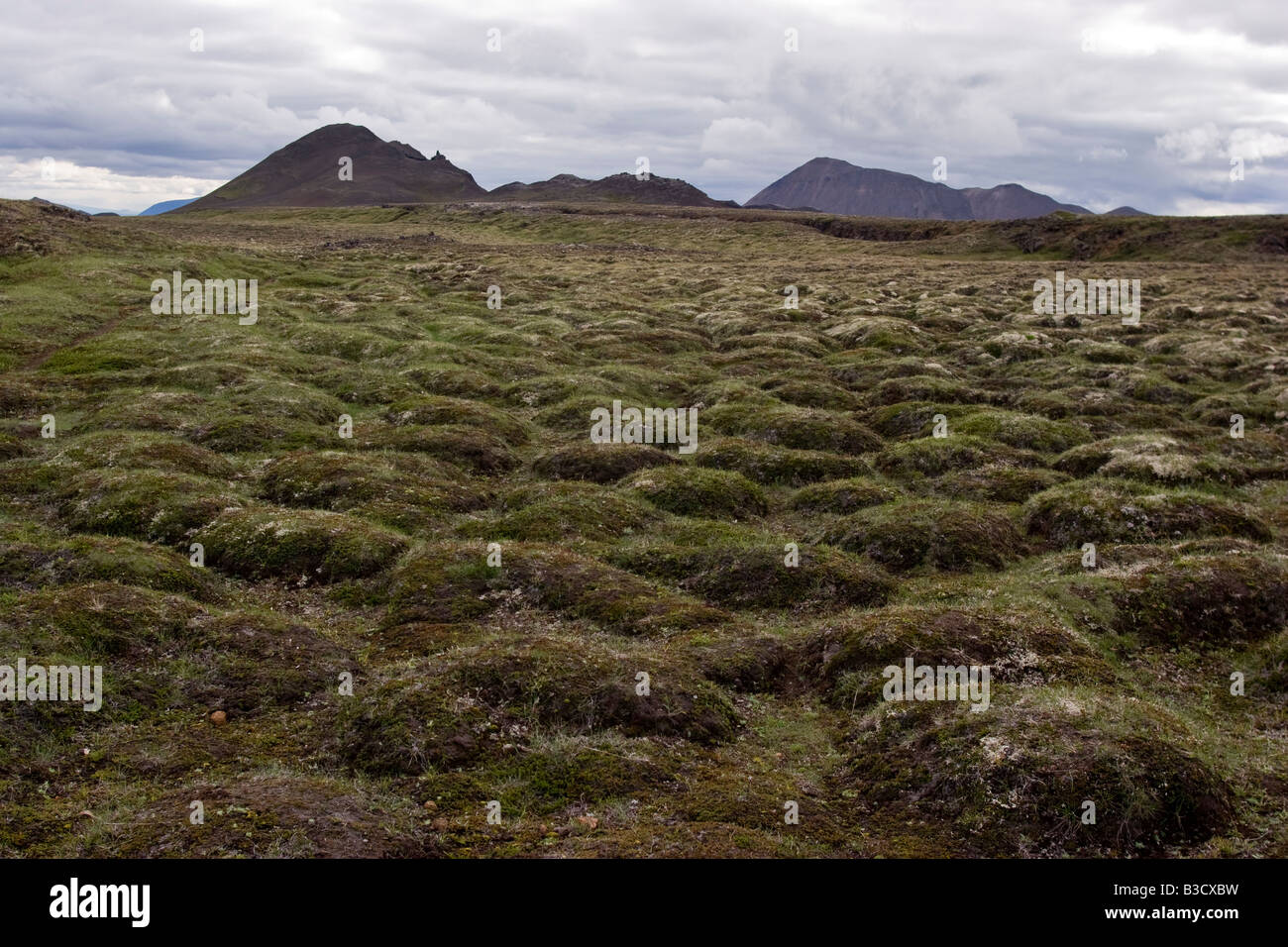 Lava field in the area of Krafla, Myvatn lake, Iceland. - Stock Image