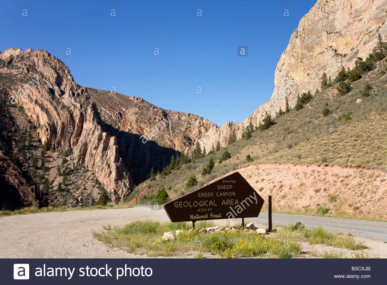 sheep creek canyon geological area ashley national forest folding