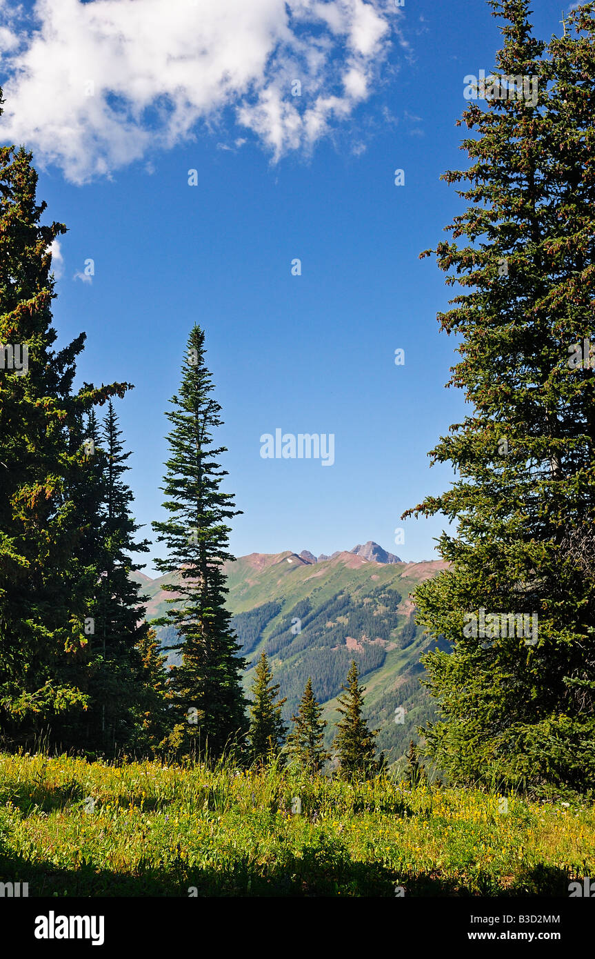 View from the top of Ajax Mountain in Aspen Colorado during the summer looking west toward Elk Mountain Range - Stock Image