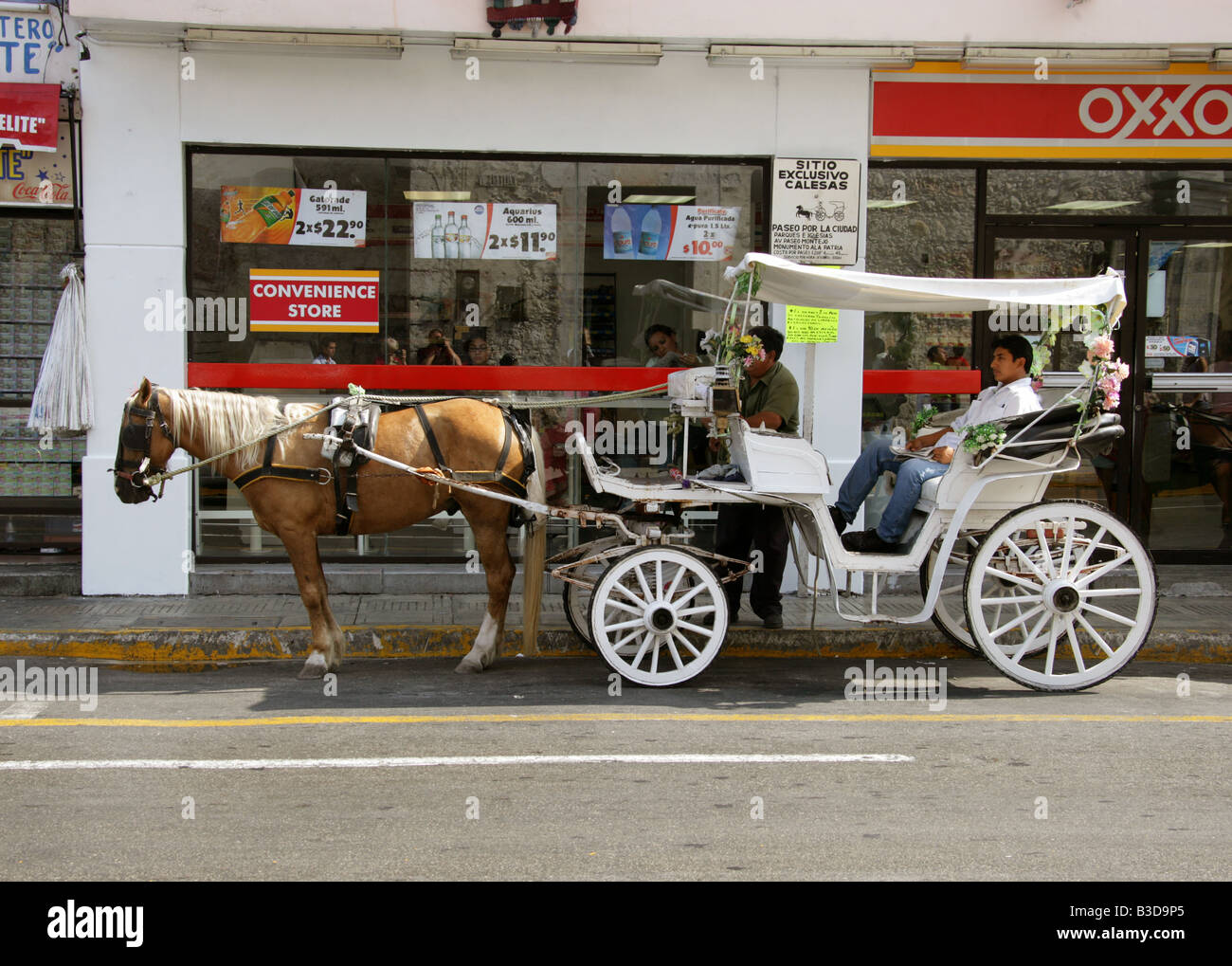 Horse and Carriage Taxi, Merida, Yucatan Peninsular, Mexico. Stock Photo