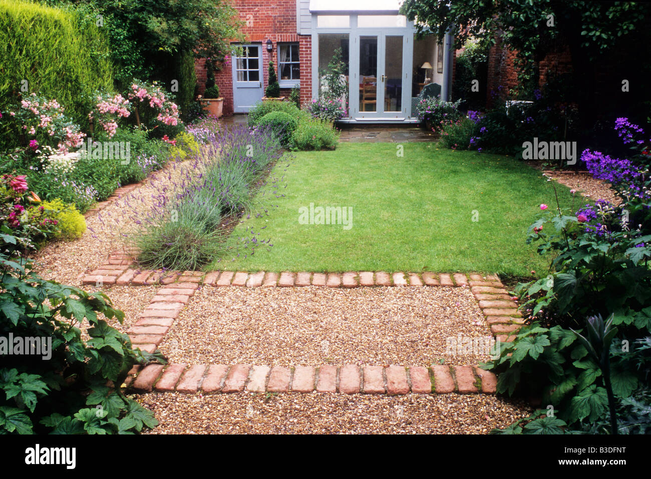 Elegant Small Back Garden Lawn Border Hedge Brick And Gravel Path Pink Rosa U0027The  Fairyu0027