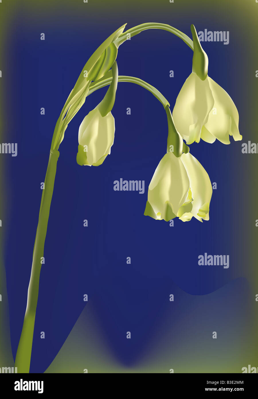 illutration of a flower in a blue background - Stock Image
