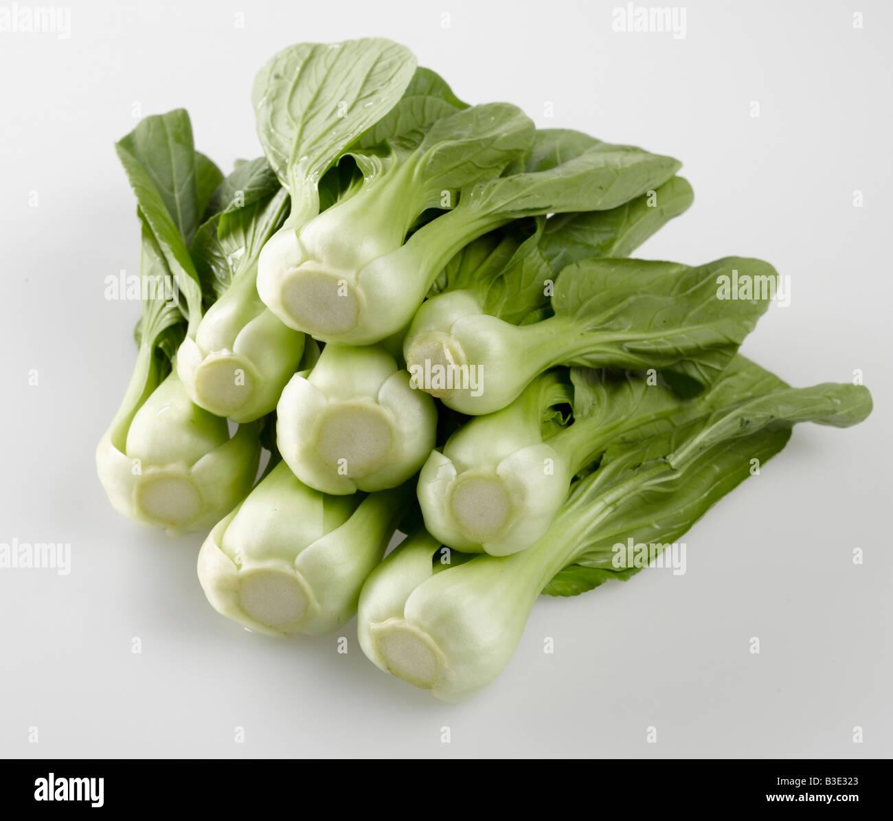 Bok choy, Chinese celery cabbage - Stock Image