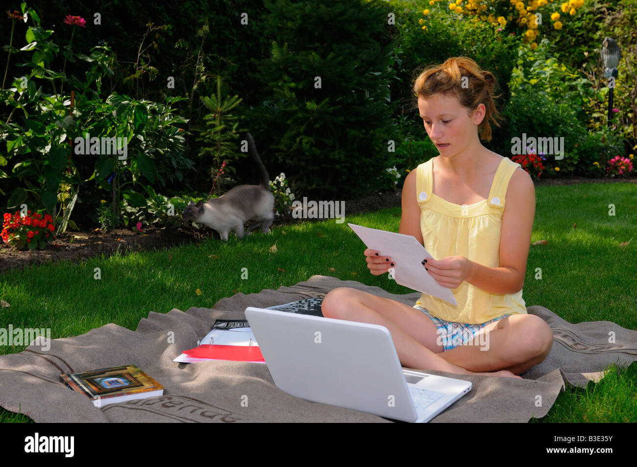 Teenager doing homework with laptop on a blanket in the back yard lawn grass in shade of a tree with running cat - Stock Image