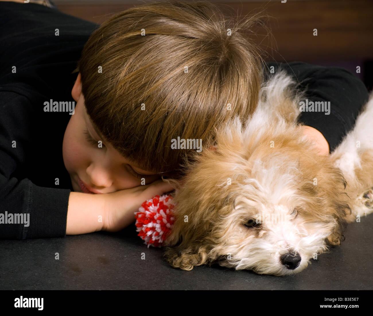Boy age 7 and dog sleeping - Stock Image