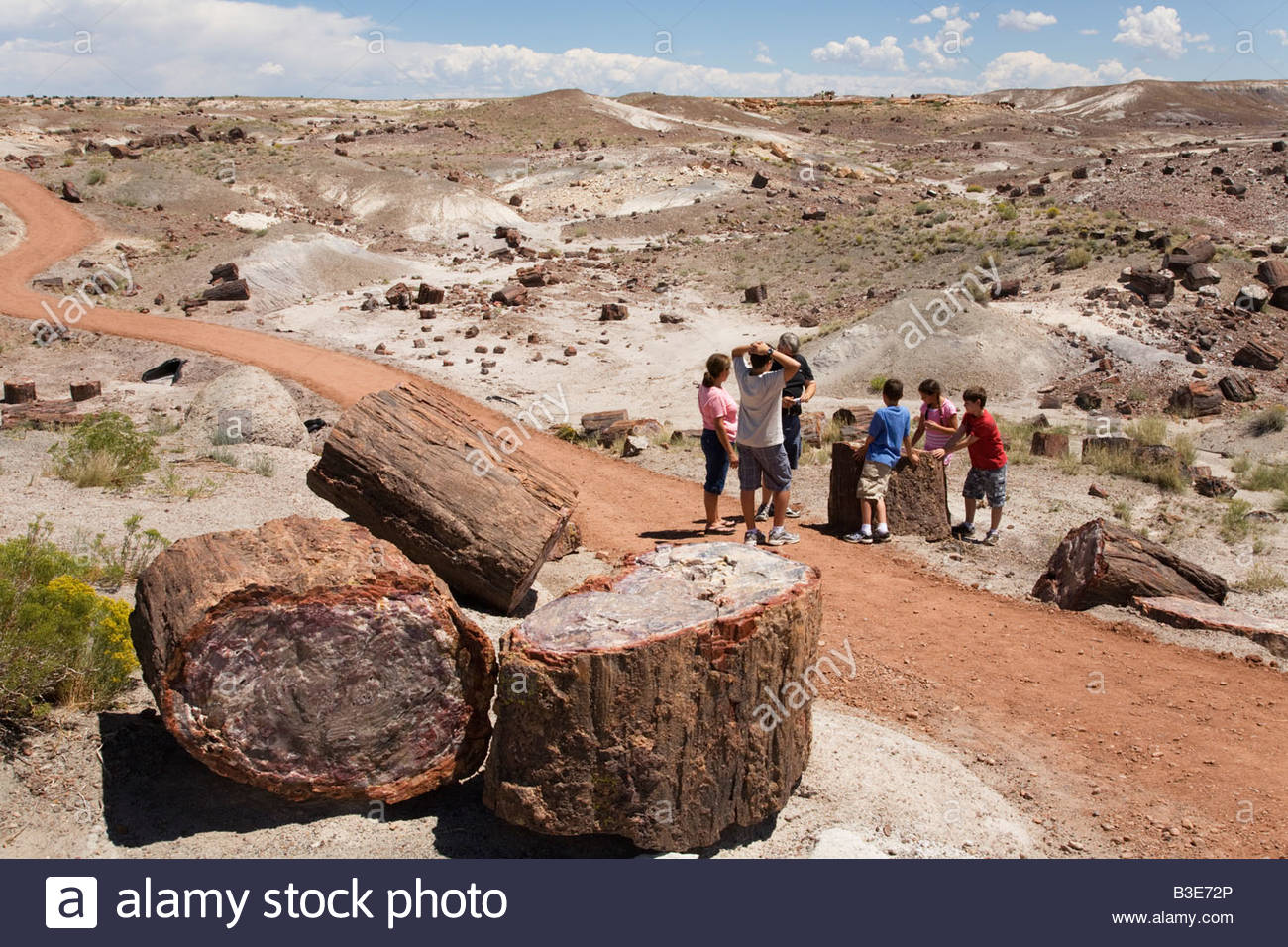 Family group adults children Petrified logs Crystal Forest Loop Trail - Stock Image