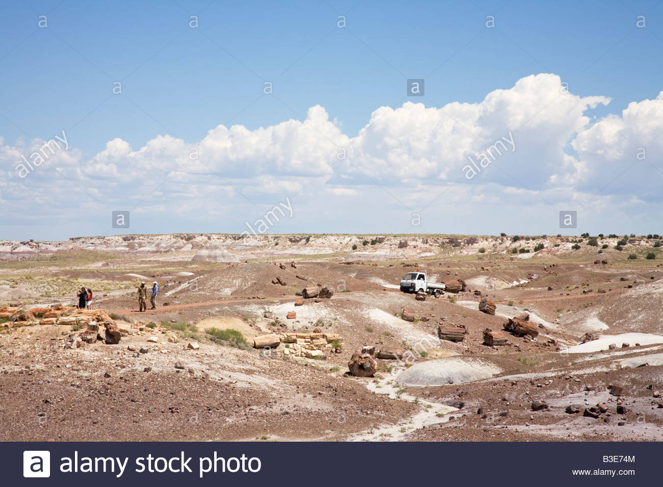 Visitors Construction Vehicle Crystal Forest Loop Trail Petrified Forest National Park Arizona - Stock Image