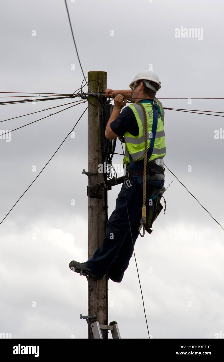 Man Installing Telephone Cables on Telegraph Pole Stock Photo ...