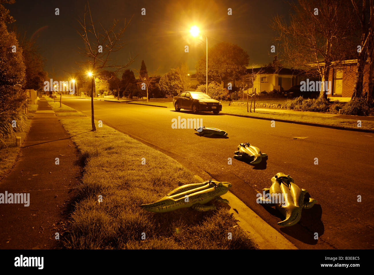 Inflatable crocodile series Suburbia - Stock Image