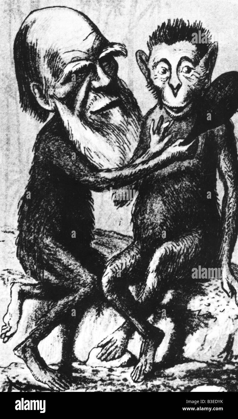 Darwin, Charles Robert, 12.2.1809 - 19.4.1882, British naturalist, caricature, contemporary cartoon from 'London - Stock Image