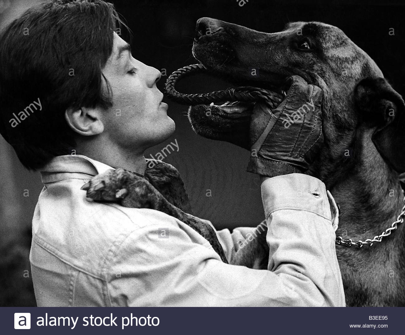 Delon, Alain, * 8.11.1935, French actor, half length, with dog, 1960s, 60s, Additional-Rights-Clearances-NA - Stock Image