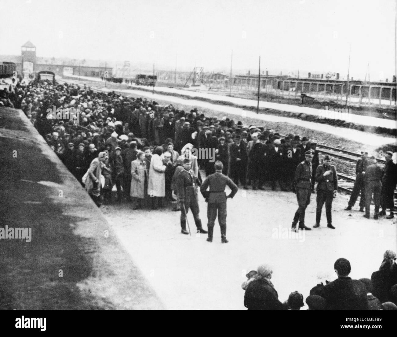 Selection of Jews / Auschwitz / 1944 - Stock Image