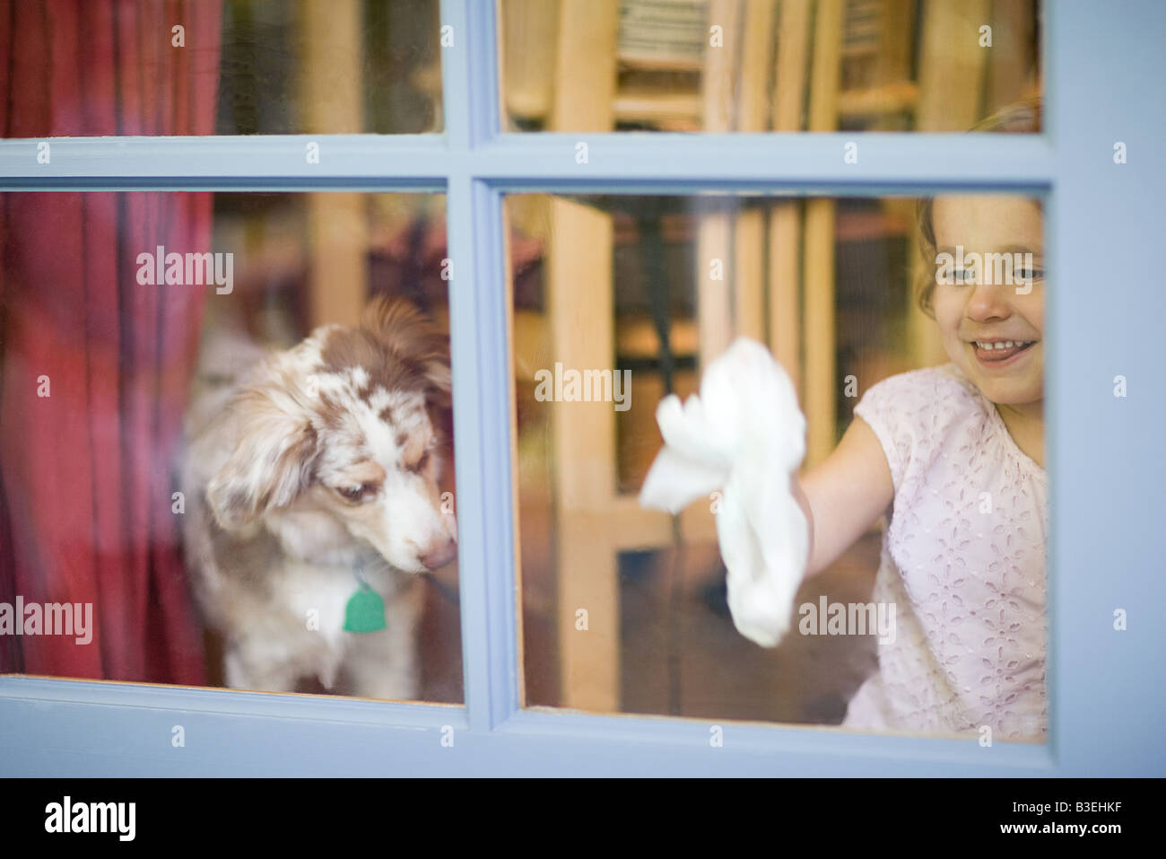 Girl cleaning window - Stock Image