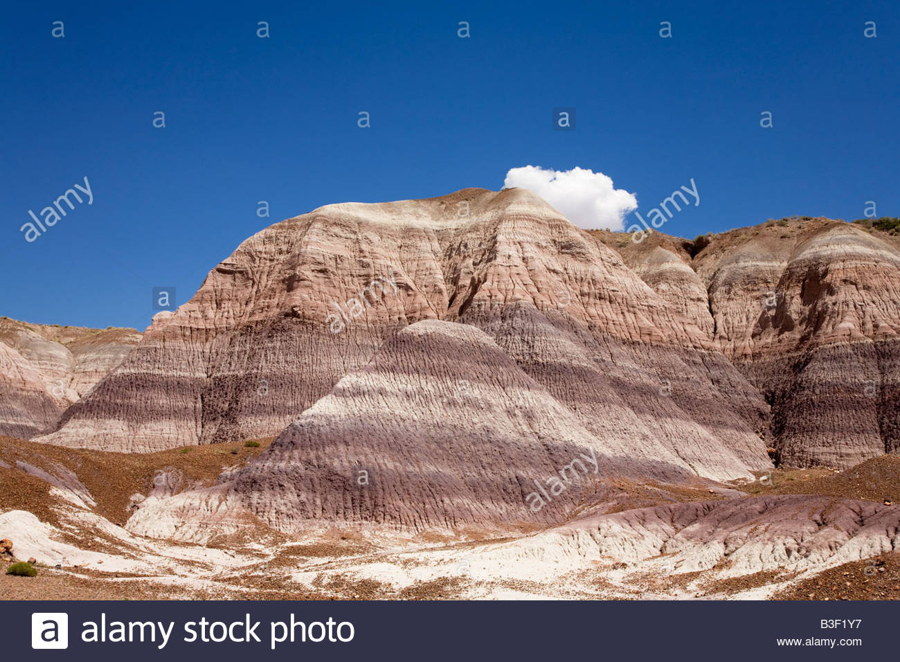 Bandlands eroded clay hills Blue Mesa Trail Petrified Forest National Park Arizona - Stock Image
