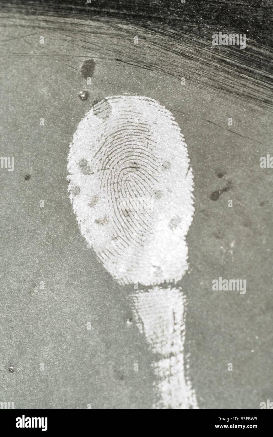 finger print - Stock Image