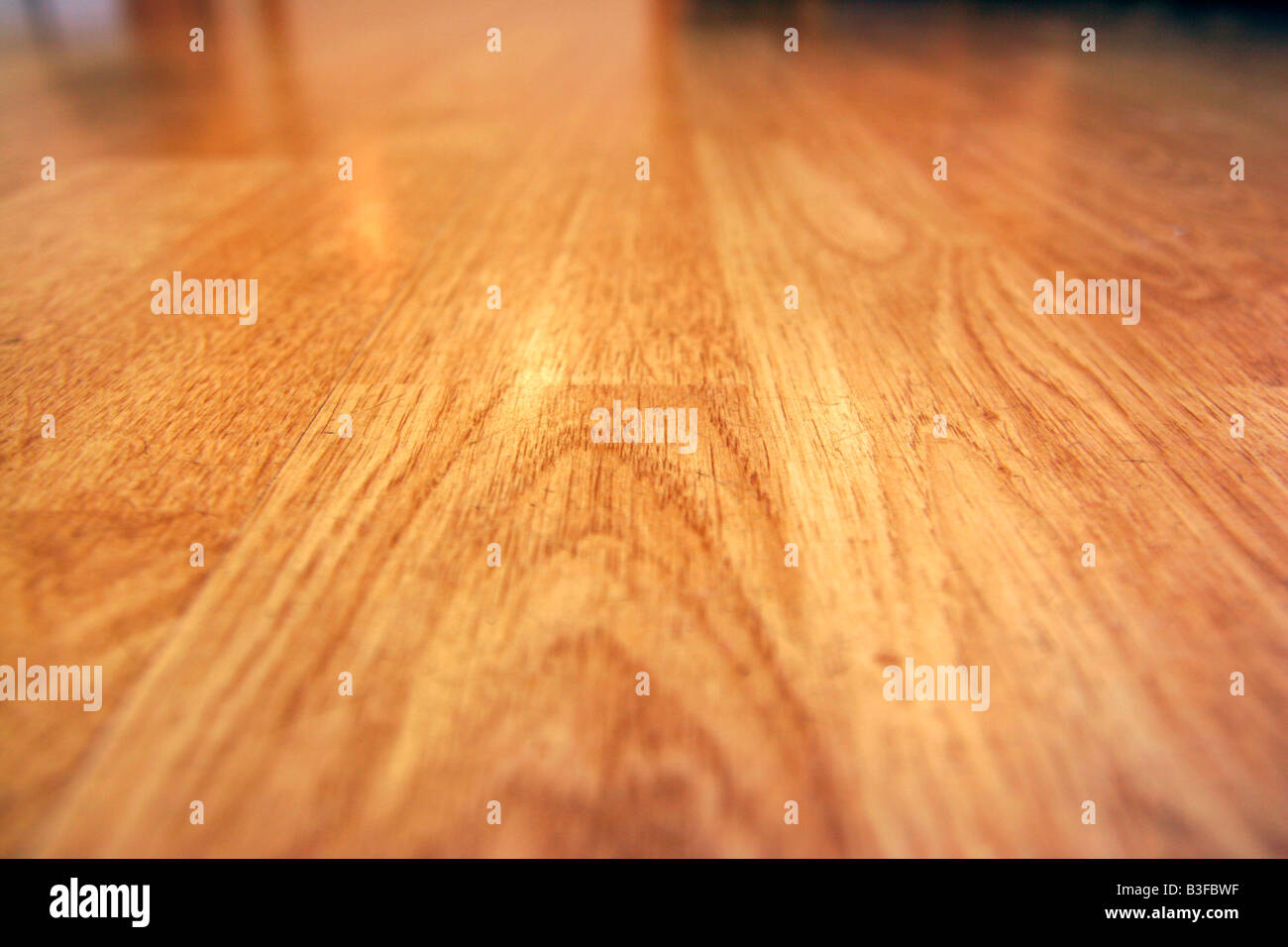 Wooden laminate floor detail - Stock Image