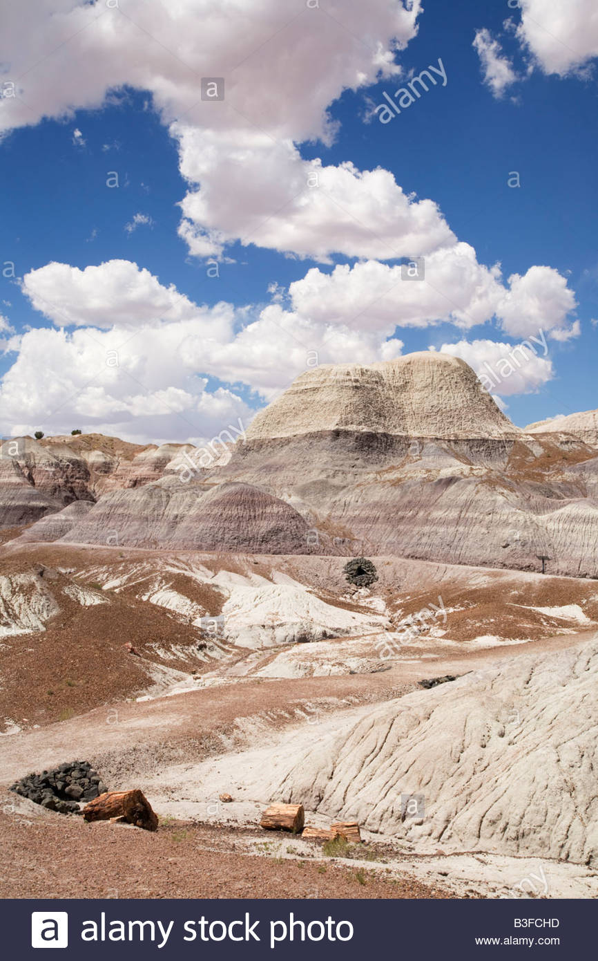 Trail Bandlands eroded clay hills Blue Mesa Trail Petrified Forest National Park Arizona - Stock Image