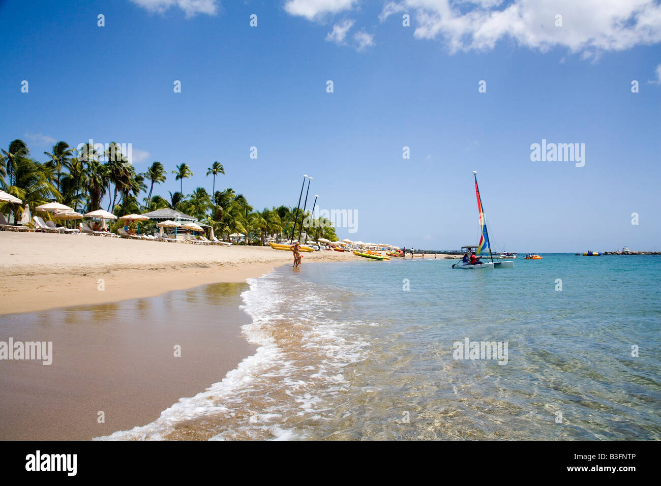 Stunning Pinneys beach with Coconut Palms at the Four Seasons Hotel in Nevis Caribbean Stock Photo