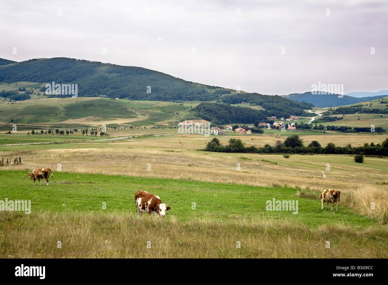 Zmijanje plato on Manjaca Mountain in Bosnia and Herzegovina - Stock Image