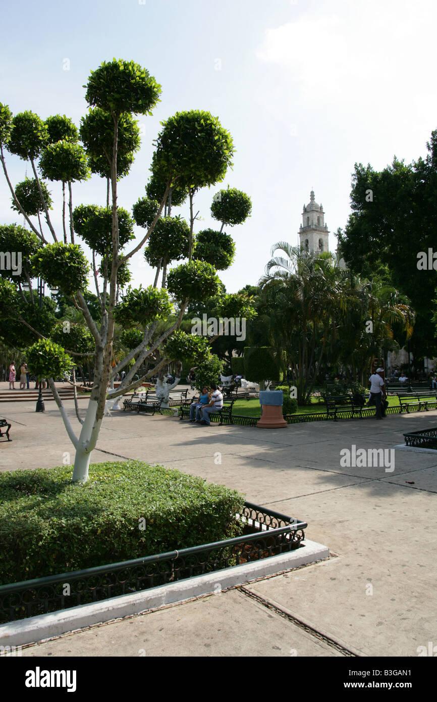 Plaza Grande, Merida, Yucatan Peninsular, Mexico Stock Photo