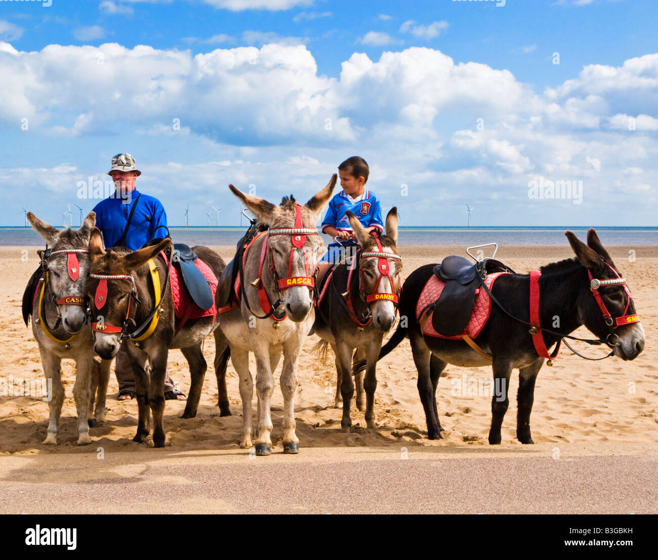 Small boy sitting on a donkey at Skegness Beach, Lincolnshire, England, UK Stock Photo