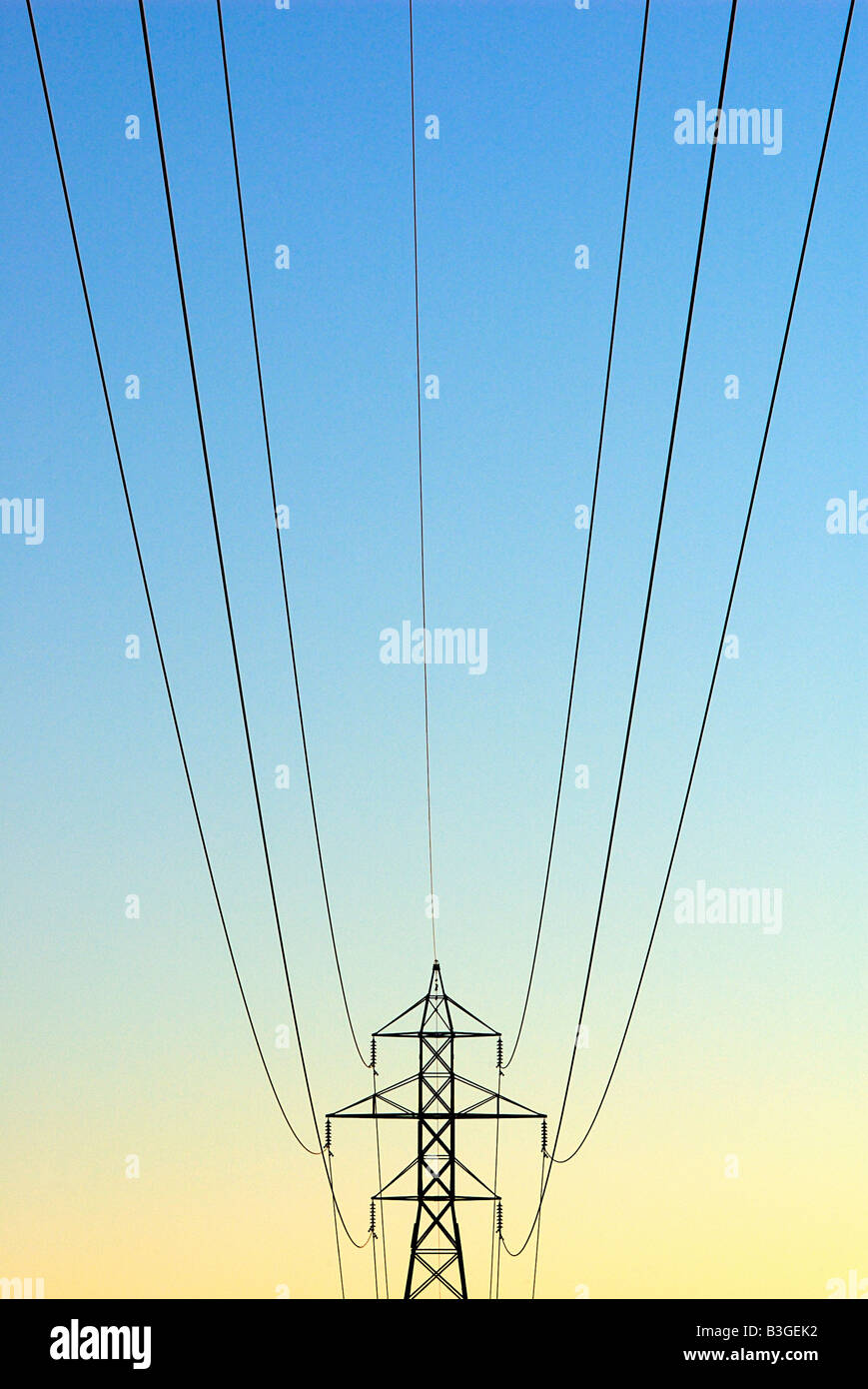 Electrical tower and power lines in sunrise Stock Photo