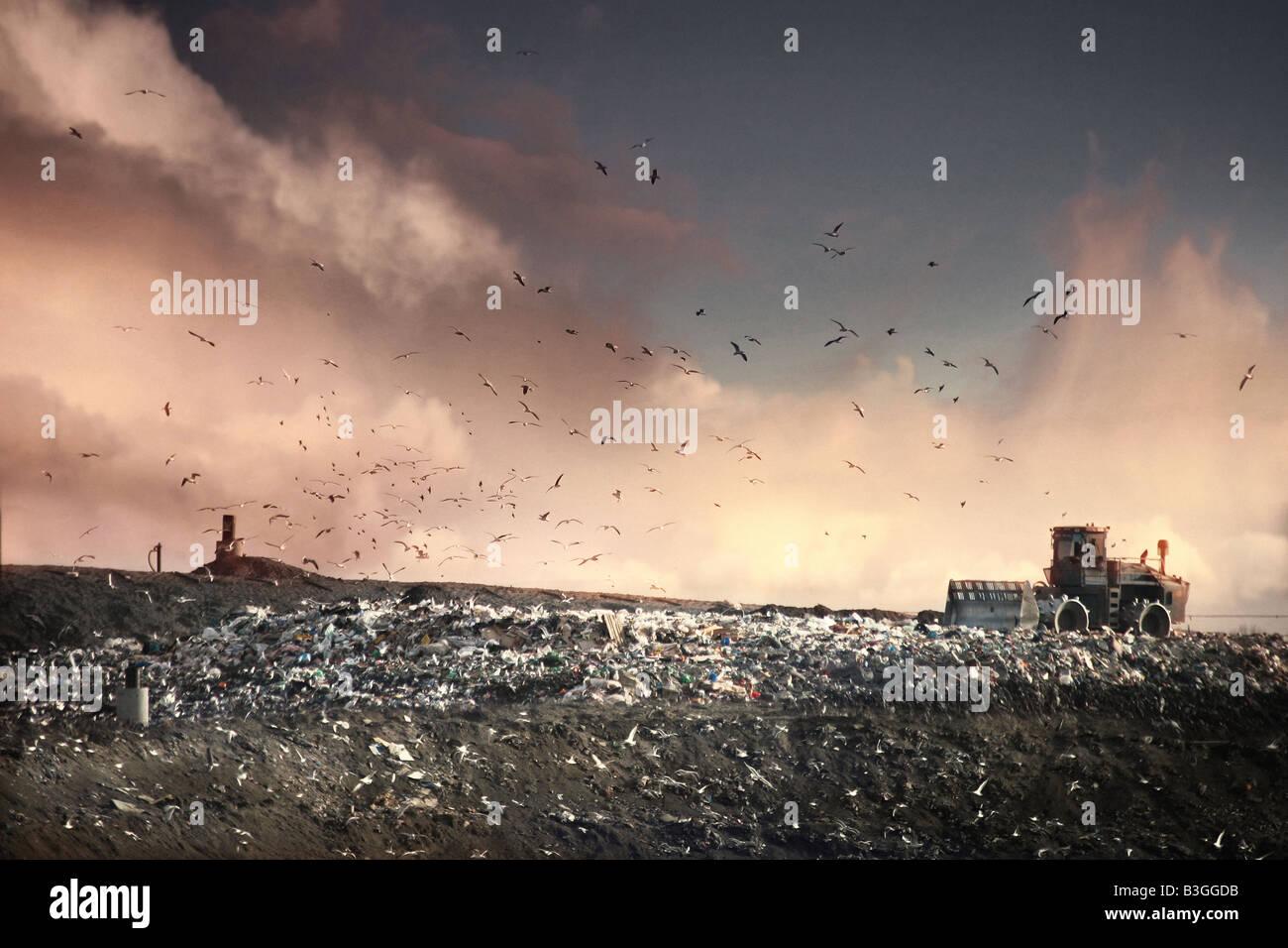 landfill site - Stock Image
