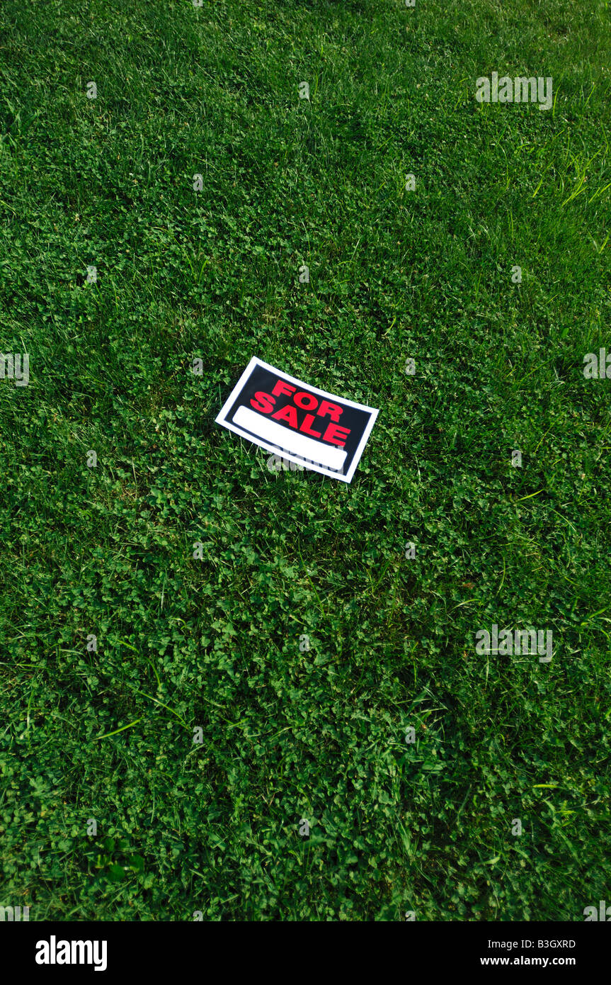 For sale sign on green grass - Stock Image
