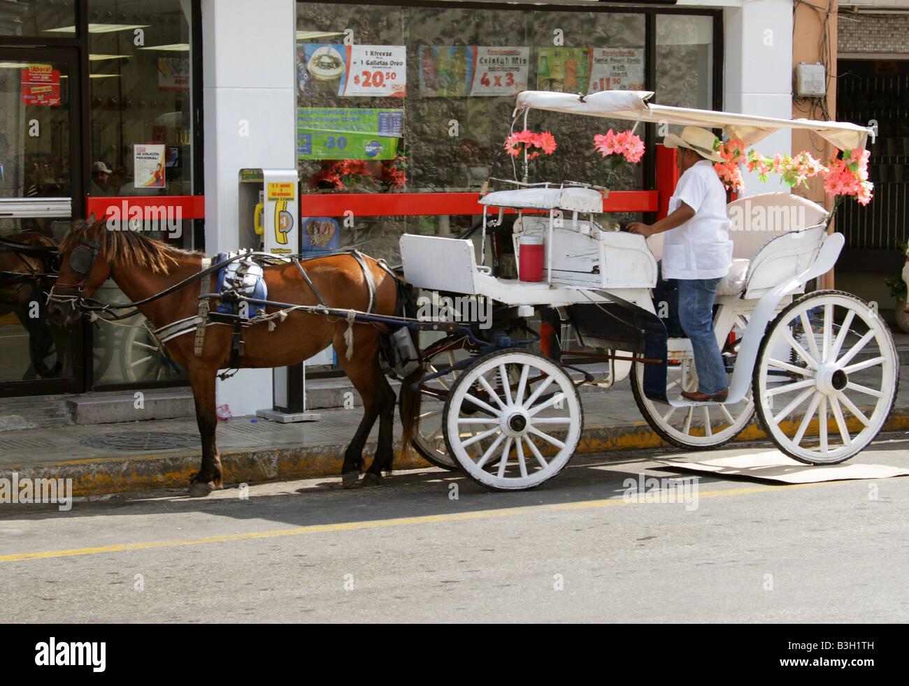 Horse and Carriage Taxi, Merida, Yucatan Peninsular, Mexico Stock Photo
