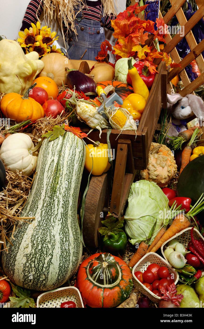 Vegetable Cornucopia on Display at the Kentucky State Fair Louisville Kentucky - Stock Image