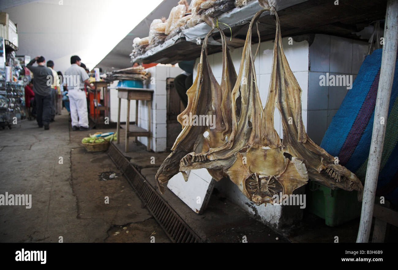 Local speciality, dried stingrays on display at the market in Loja in Ecuador. - Stock Image