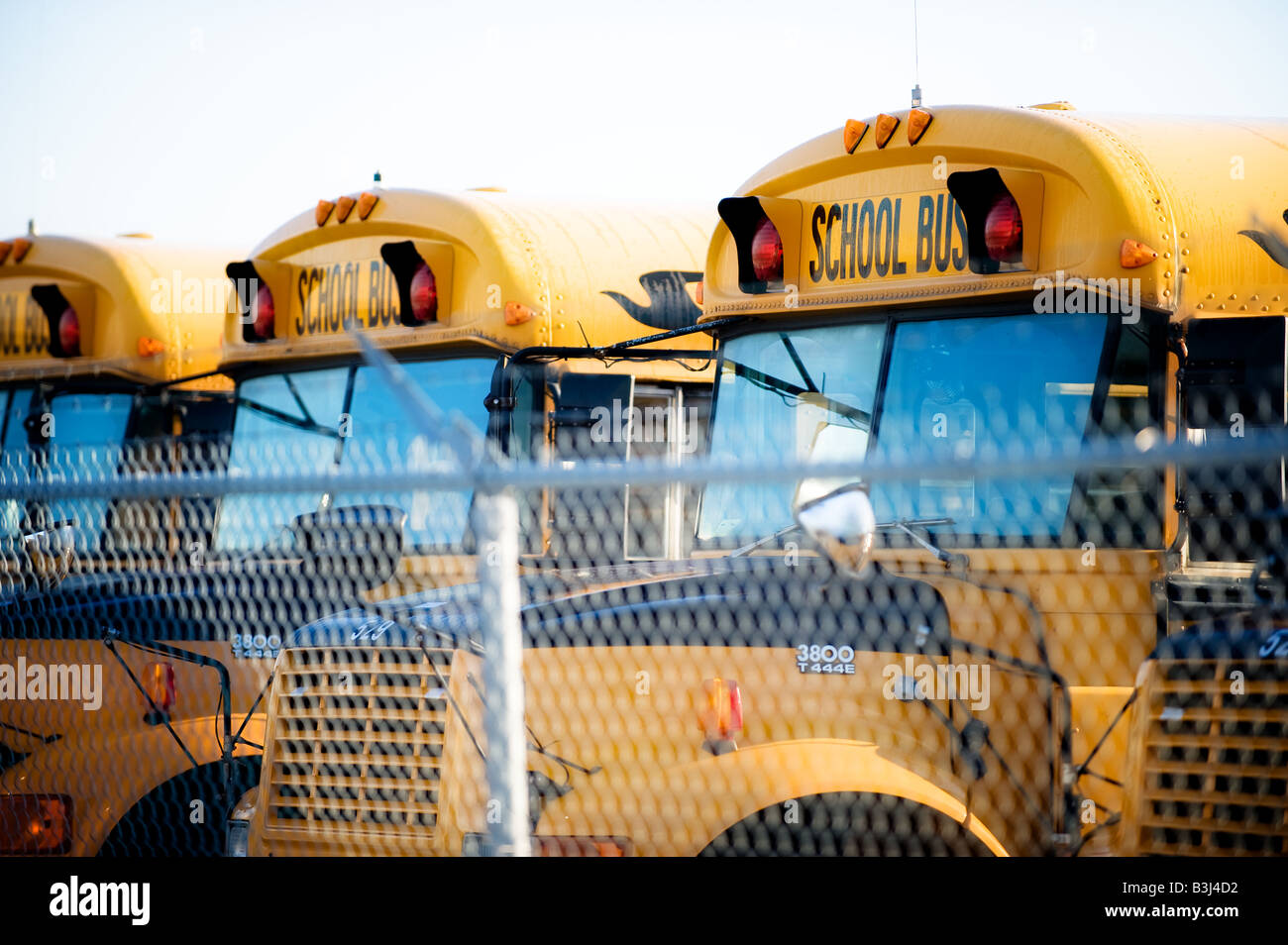 Several buses lined up in a depot ready for the school season. - Stock Image