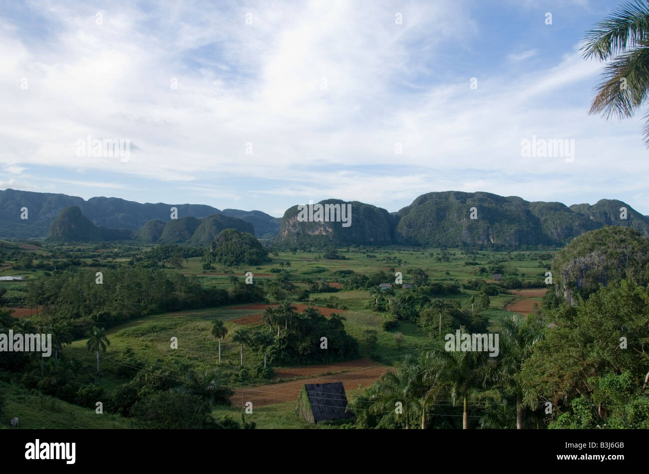 View of Valley in Vinales Stock Photo