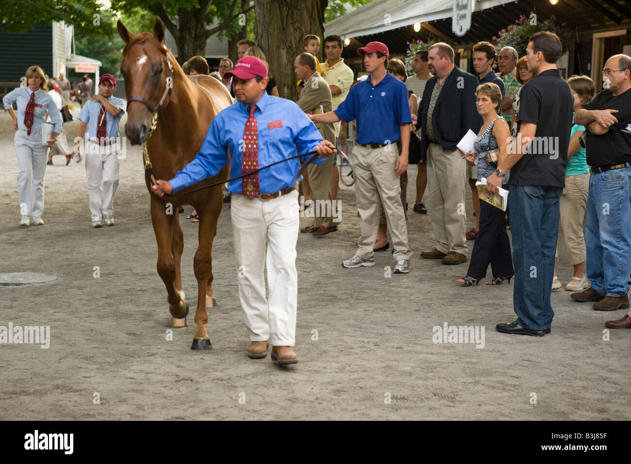Annual Fasig Tipton thoroughbred horse auction Saratoga Springs New York - Stock Image
