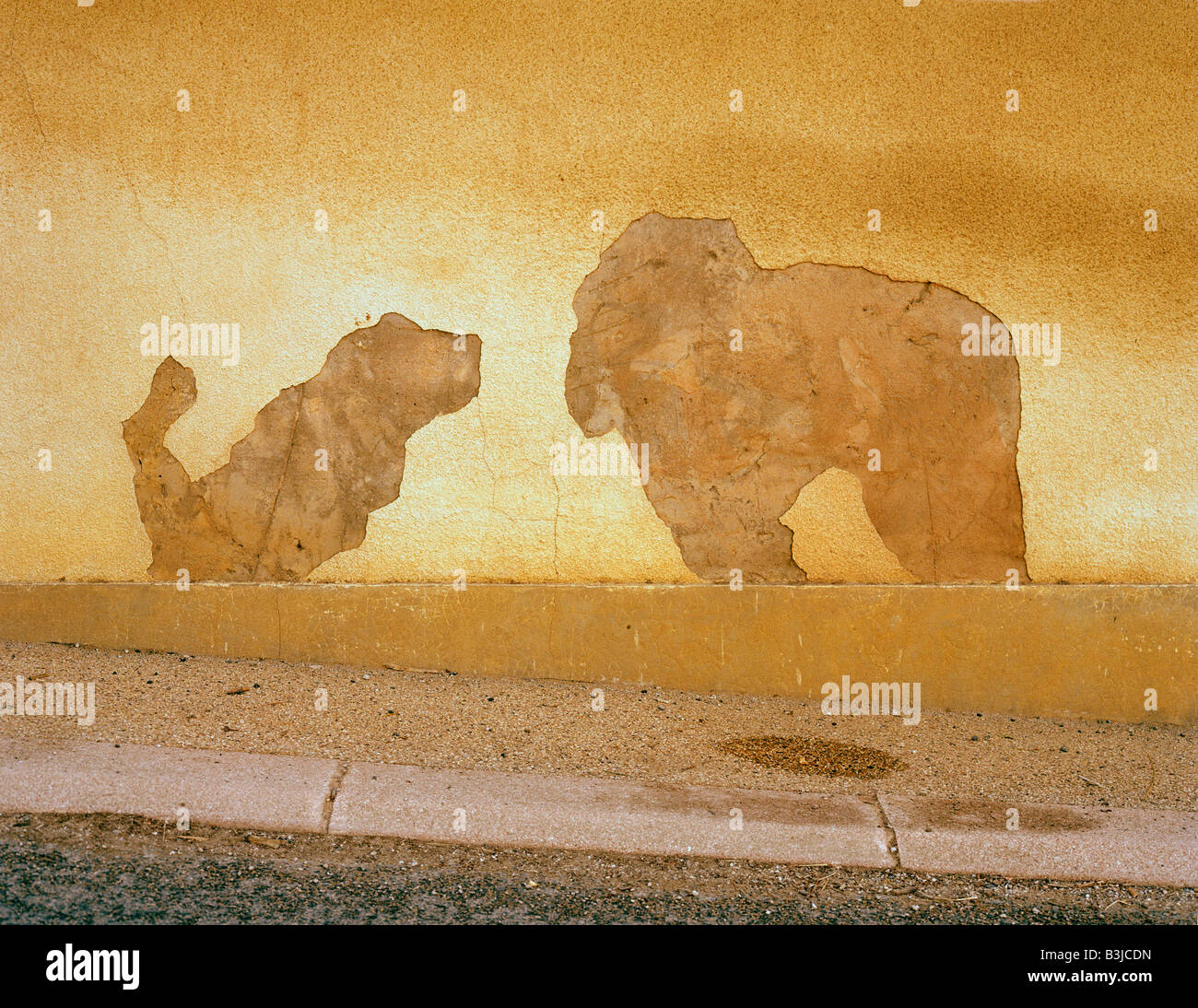 crumbled plaster on a wall showing a dog and an elephant abgesprungener Putz an Hausfassade mit Hund - Stock Image