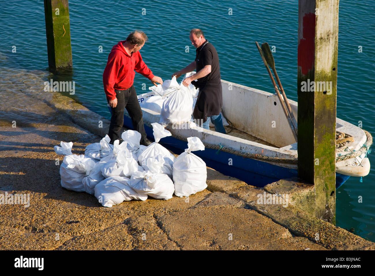 Fishermen unloading sacks of shellfish from their boat - Stock Image