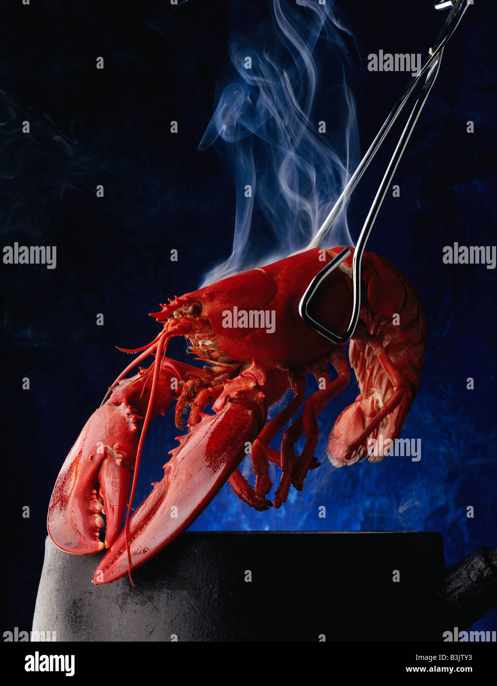 Graphic Photograph Cooked Lobster Stock Photos & Graphic Photograph ...