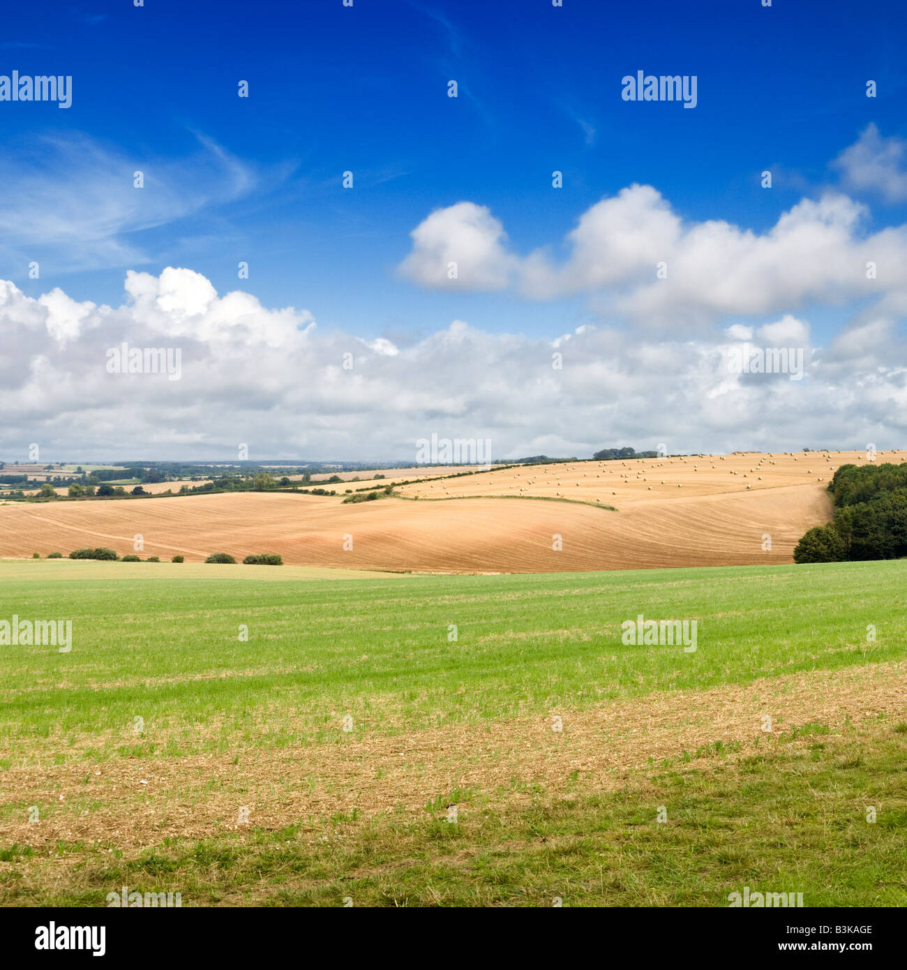 English countryside landscape of the Lincolnshire Wolds, England. UK - Stock Image