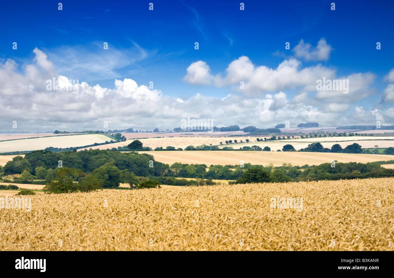 Lincolnshire Wolds, English countryside, England, UK - Stock Image