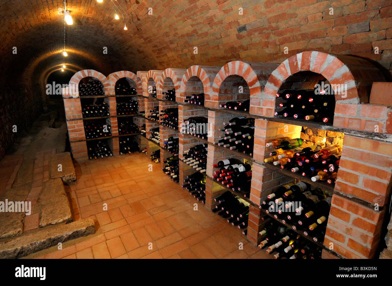 Wine cellar, Austria - Stock Image