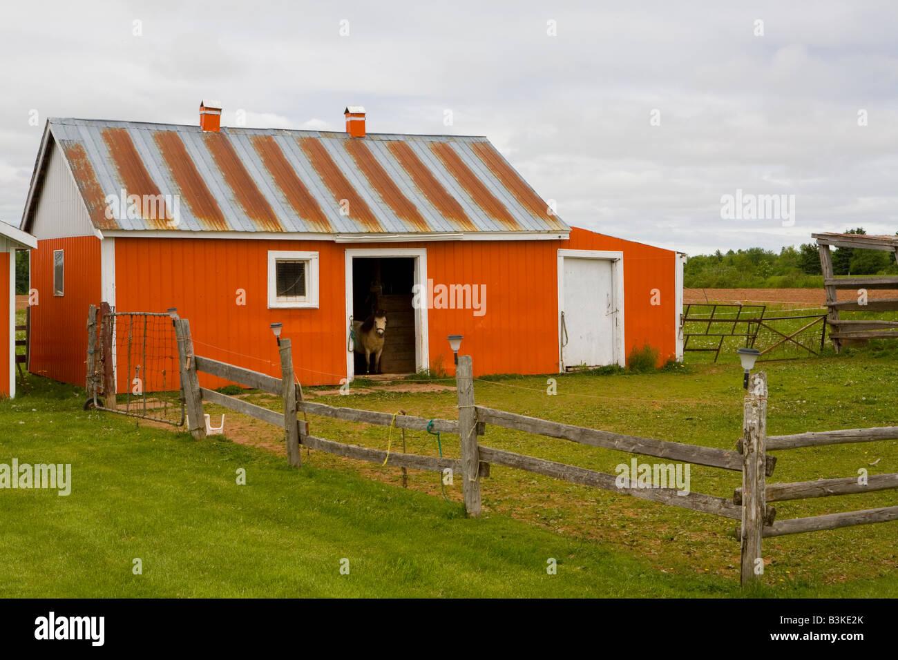 Pony Stable Coleman Prince County Prince Edward Island Canada - Stock Image